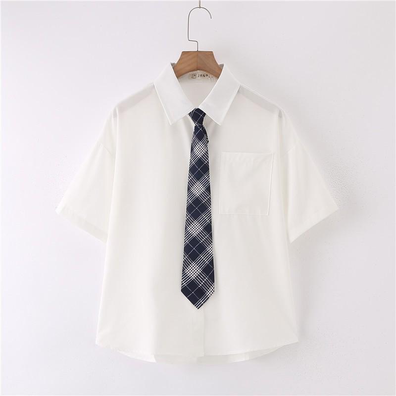 Royal Blue Plaid Tie